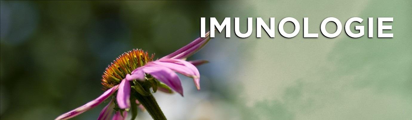 imunologie-2